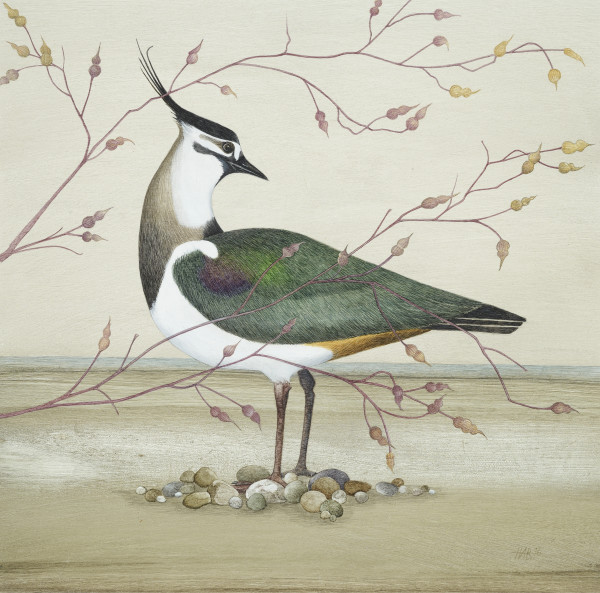 Harriet Bane Lapwing Watercolour and acrylic on plaster 13.4 x 13.4ins (34 x 34cm)