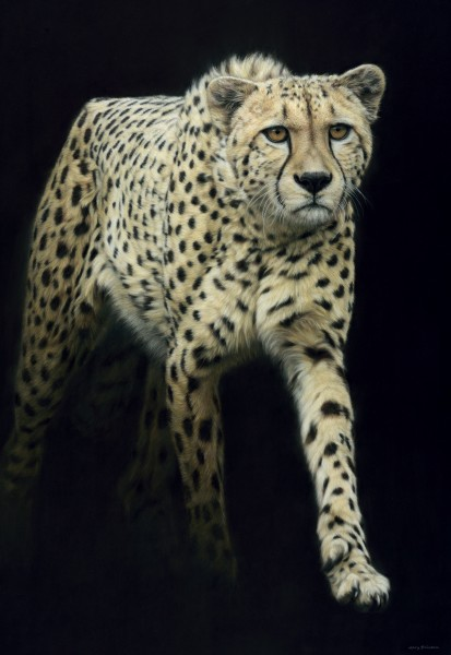 Gary Stinton, Cheetah - Large as Life IX