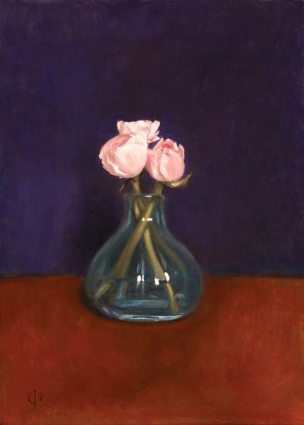 James Gillick, Pink Ranunculus, 2015