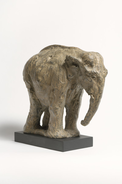 Tanya Brett, Indian Elephant