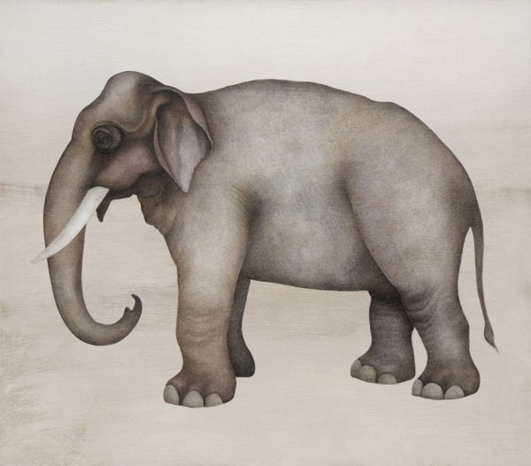Harriet Bane Asian Elephant Watercolour and acrylic on plaster 29.3 x 33.6ins (74.5 x 85.5cm)