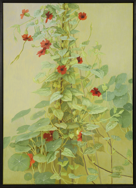 Jane Wormell, Black eyed Susan (Thunbergia) and Nasturtium Leaves, 2020