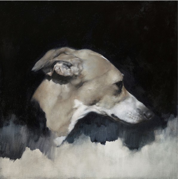 Justin Coburn Whippet Head Study II Oil on panel 15.75 x 15.75ins (40 x 40cm) (artwork size) 17.05 x 17.05ins (43.3 x 43.3cm) (framed size)
