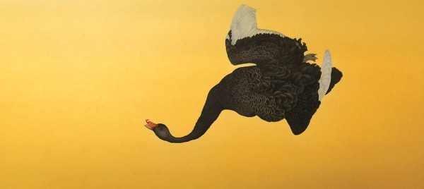 Steven Porwol, Black Swan