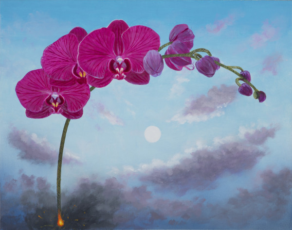 L.C. Armstrong Flowers on a Fuse: Phalaenopsis, 2014 oil on linen on birch panel 11 x 14 in.