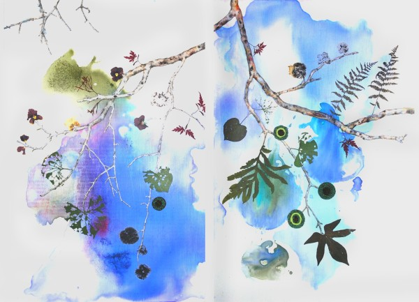 Marilla Palmer  Fruit of the Japanese Maple, 2013  ink, watercolor, beads and pressed foliage on panel  36 x 48 in. diptych