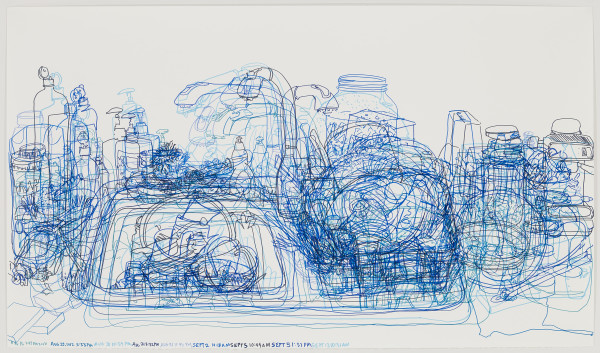 Joan Linder  Blue Sink , 2013  marker on paper  29 x 50 in.