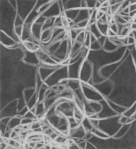 Tamar Zinn  Tangle 36, 2014  charcoal on paper  8 1/2 x 7 3/4 in  $900