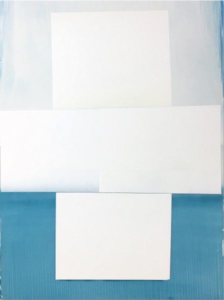 Jeffrey Cortland Jones  Replicant (Mute Grab), 2016  enamel on acrylic panel  48 x 36 in.