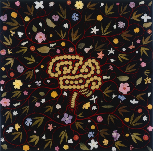 Fred Tomaselli Brain With Flowers , 1990-97 mixed media 24 x 24 in.