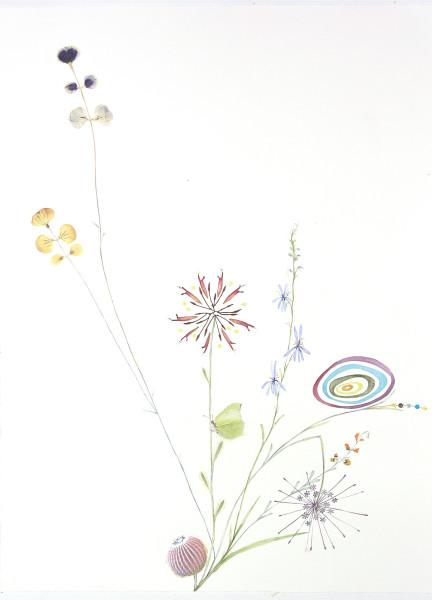 Marilla Palmer, Bee Balm and Blue Lupine, 2018