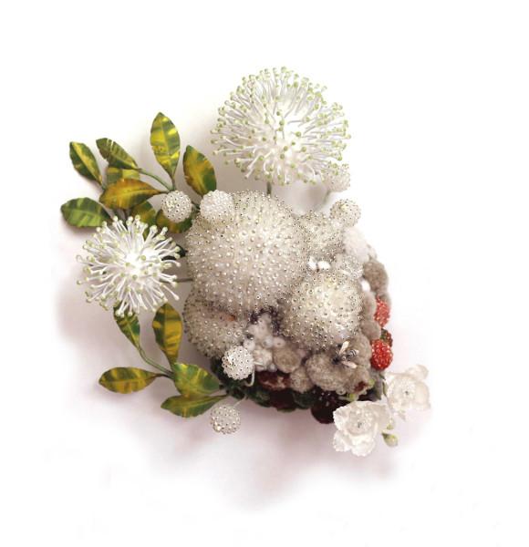 Amy Gross, Cephalanthus Biotope