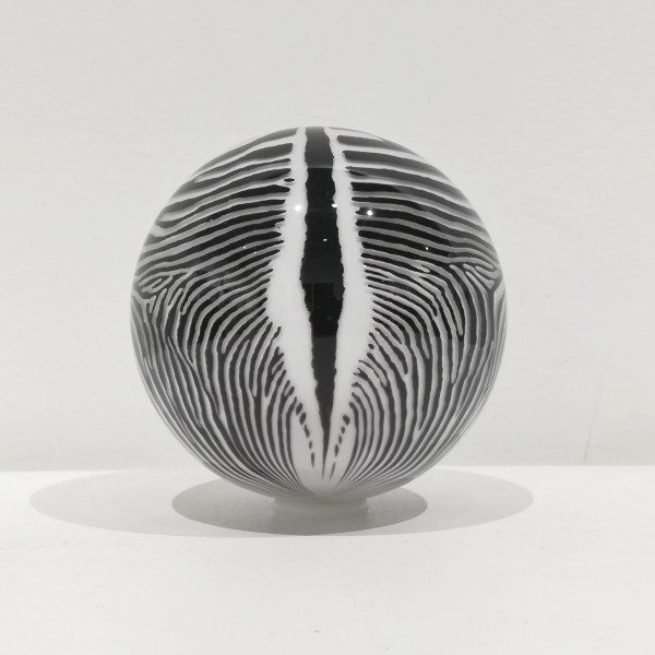 Mark Matthews, Grevy's Zebra