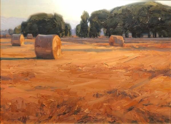 Joe Wayne, Hay Rolls in Autumn
