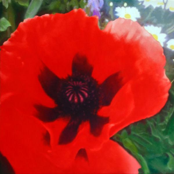 Michael Haykin, Milltown Garden