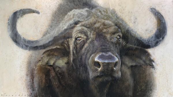 David Frederick Riley, Cape Buffalo
