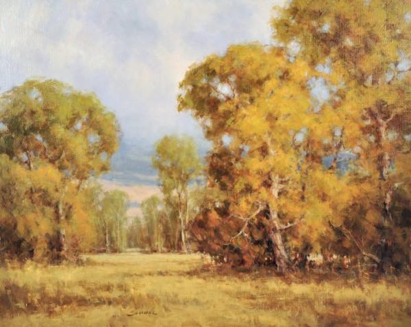 Greg Scheibel, Cottonwoods