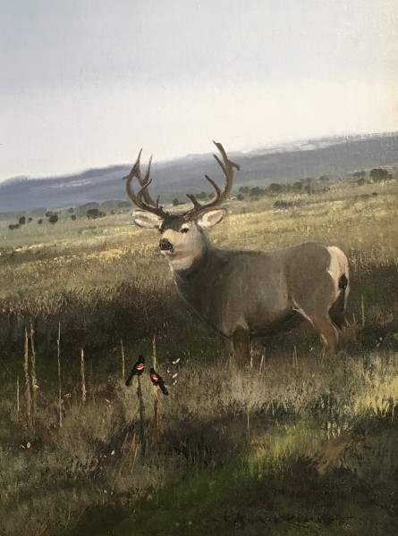 Nicholas Coleman, Through the Sage; Mule Deer