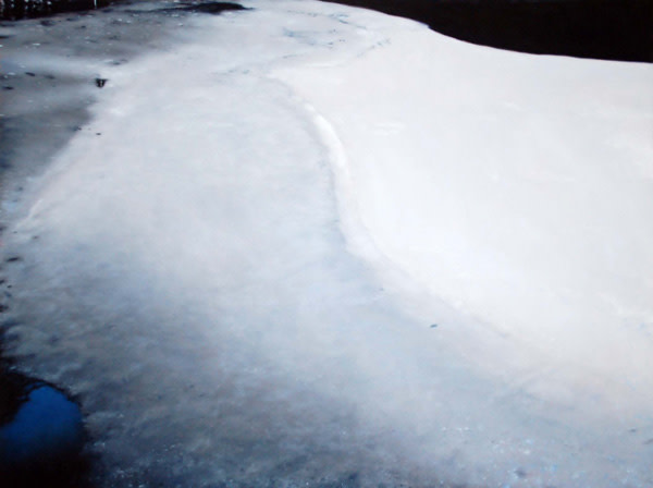 Michael Haykin, Frozen Pond