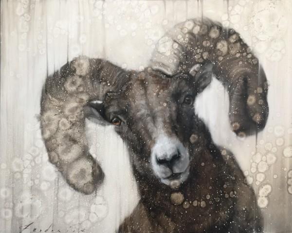 David Frederick Riley, Curious Ram