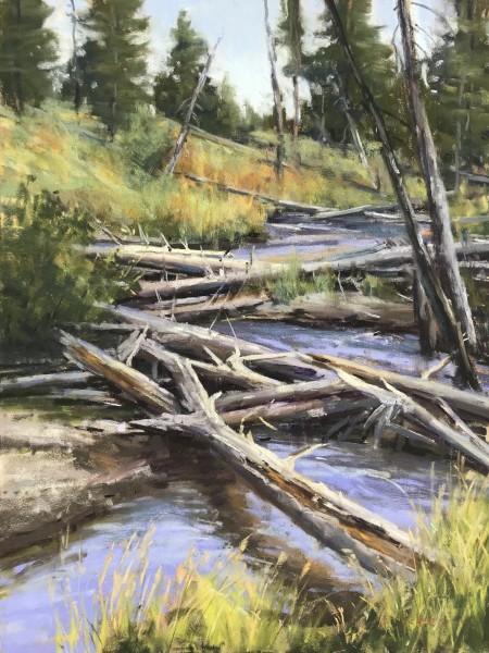 Aaron Schuerr, Lava Creek Tangle