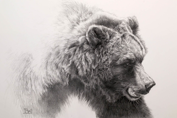 Julie Bell, GRIZZLY