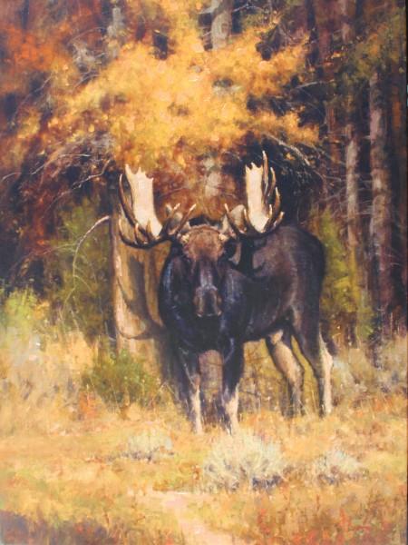 John Demott, Moose