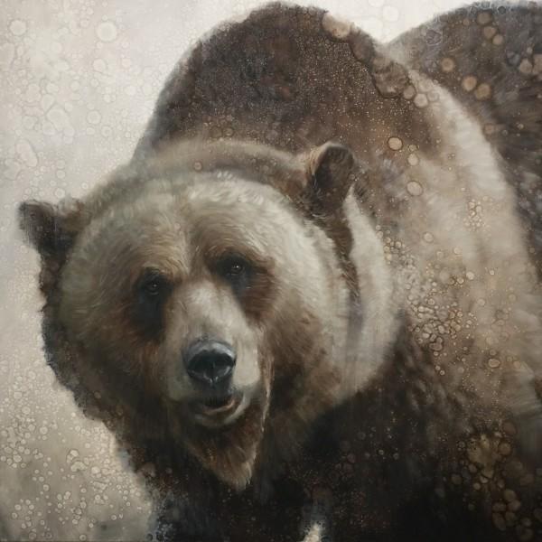 David Frederick Riley, PAPA BEAR