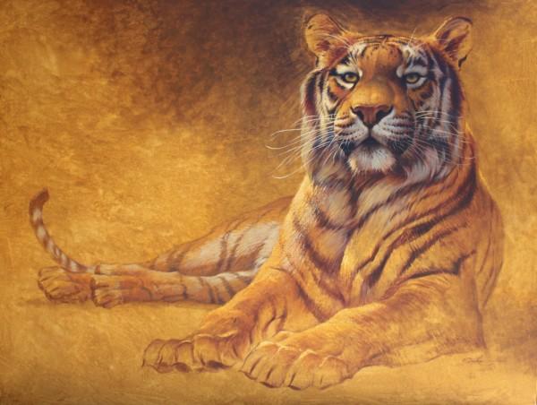 Ezra Tucker, Tiger Laying Down