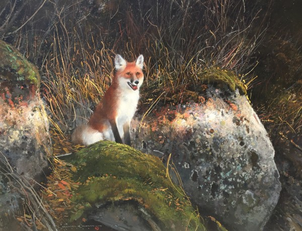 Michael Coleman, Red Fox - Lower Creek Yellowstone