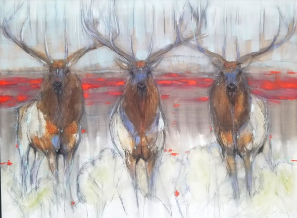 Amy Lay, Antlers and Fog