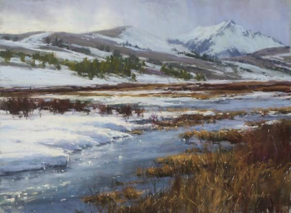 Aaron Schuerr, SWAN LAKE FLATS