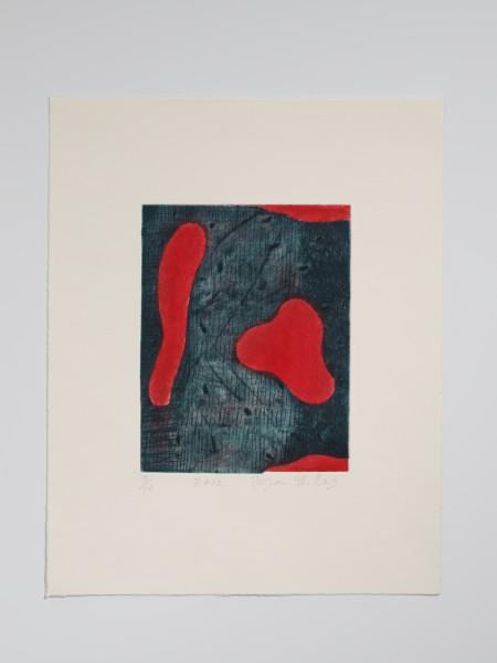 Bryan Illsley, Print I