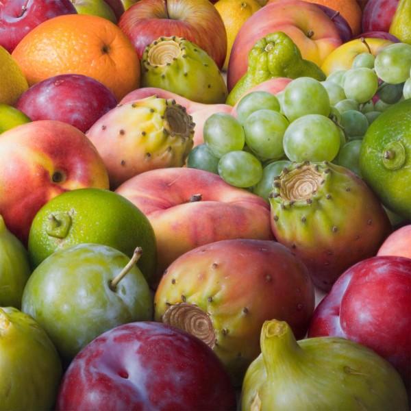 Antonio Castello, Multifruits