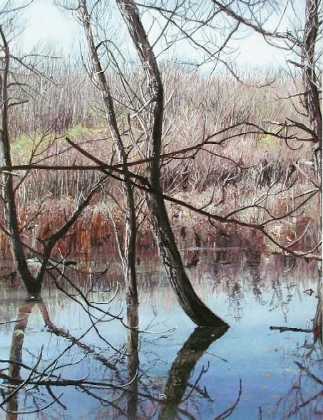 James Van Patten, Spring Flooding