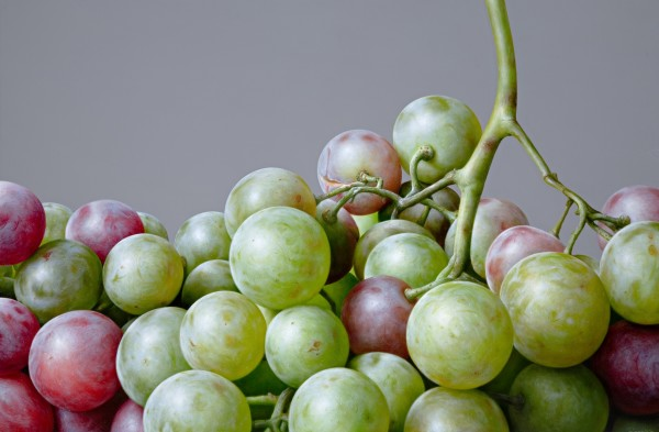 Antonio Castello, Grapes II