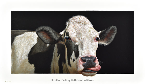 Alexandra Klimas Susan the Cow, 2016 Oil on canvas 70 x 120 cm