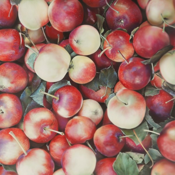 Ben Schonzeit, Lady Apples