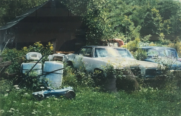 John Salt, Two Cars in a Field , 1987