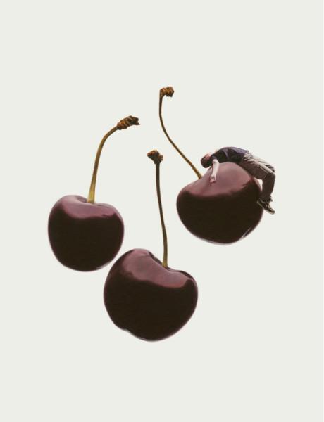 The Cherry Season