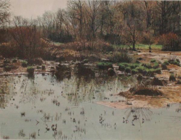James Van Patten, March Marsh