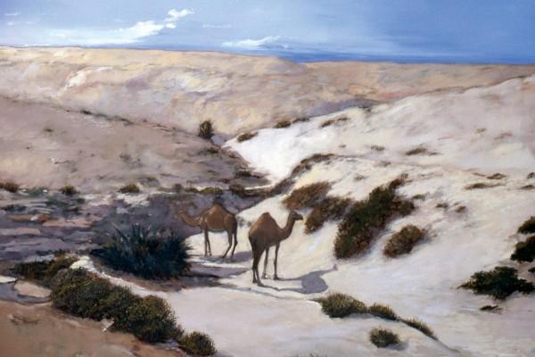 Rashid Al Khalifa, Camels at Rumaitha Wadi, 1983