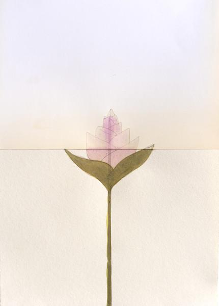 Mireille Gros, Fictional Plants 6, 2019
