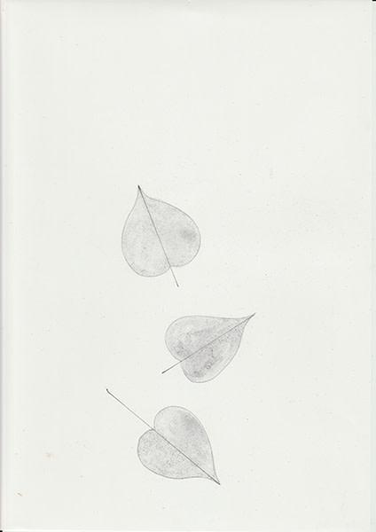 Mireille Gros, Fictional Plants 25, 2019