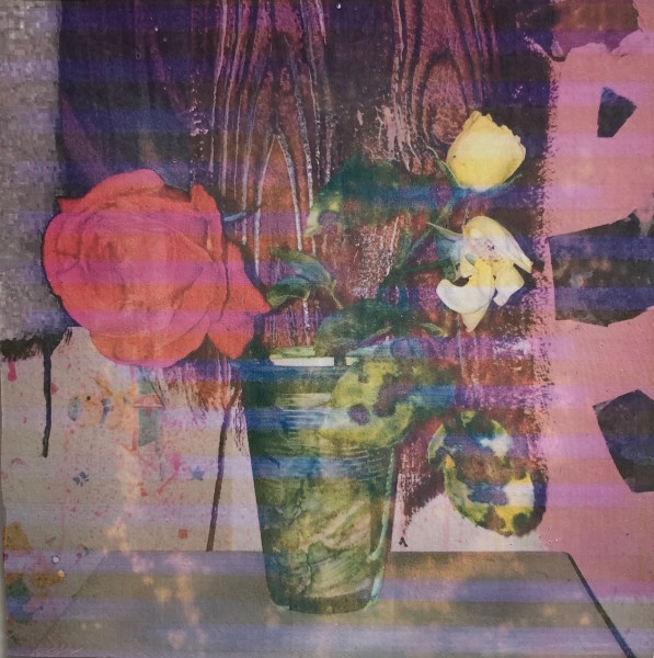 Austin Hearne, Teddy's Rose