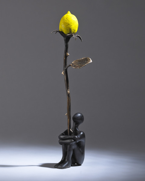 Orla de Brí, Lemon Rose