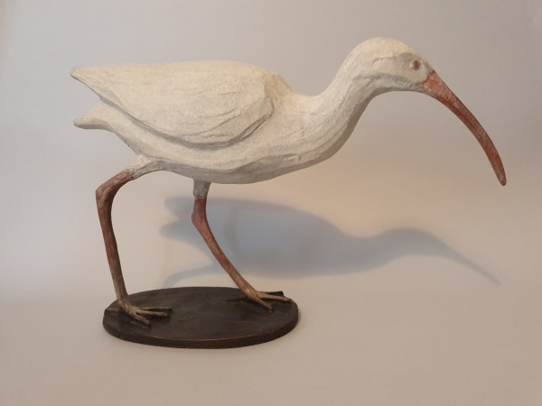 Fiona Smith, White Ibis