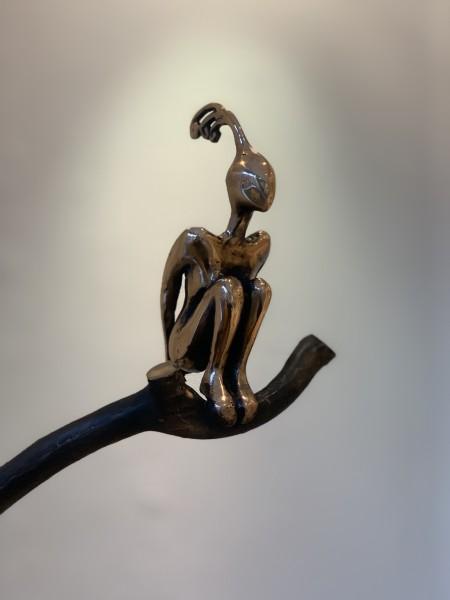 Orla de Brí, Aves Envy