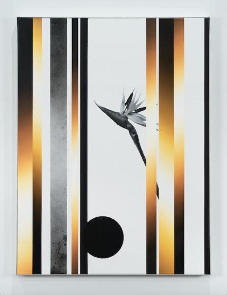 Martin Basher, Untitled, 2017