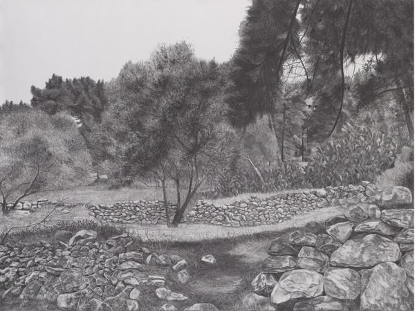 Samah Shihadi, landscape, 2019